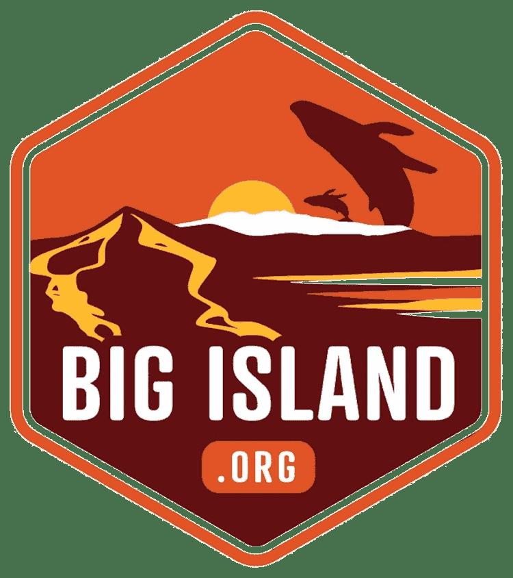bigisland.org